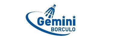 Gemini Volleybal Borculo